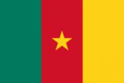 Монеты Камерун