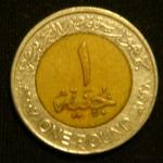 1 фунт 2007 год